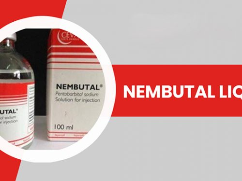 Which is the Best Place to Buy Cheap Nembutal Online?