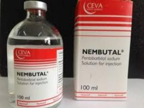 Suicide with nembutal is the best without pain.